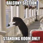 Balcony Bear | BALCONY SECTION STANDING ROOM ONLY | image tagged in balcony bear | made w/ Imgflip meme maker