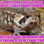 Ice Cream Challenge | I LICKED A TOAD'S BELLY AT THE PET STORE AND PUT IT BACK. NOBODY SEEMED TO CARE. WELL, EXCEPT FOR THE DRAGONS WHO STARTED CHASING AFTER ME A | image tagged in memes,grumpy toad,ice cream | made w/ Imgflip meme maker