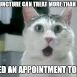 OMG Cat Meme | ACUPUNCTURE CAN TREAT MORE THAN PAIN? I NEED AN APPOINTMENT TODAY! | image tagged in memes,omg cat | made w/ Imgflip meme maker