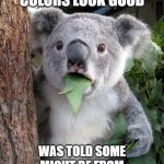 Surprised Koala Meme | THOSE LIPSTICK COLORS LOOK GOOD WAS TOLD SOME MIGHT BE FROM CEMETERIES..TELL IT LIKE IT IS | image tagged in memes,surprised koala | made w/ Imgflip meme maker