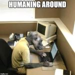 Homo Sapiens Be Like | HUMANING AROUND | image tagged in memes,monkey business,humanity,work | made w/ Imgflip meme maker