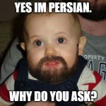 Beard Baby Meme | YES IM PERSIAN. WHY DO YOU ASK? | image tagged in memes,beard baby | made w/ Imgflip meme maker