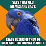 Paranoid Parrot Meme | SEES THAT OLD MEMES ARE BACK READS DOZENS OF THEM TO MAKE SURE THE FORMAT IS RIGHT | image tagged in memes,paranoid parrot,AdviceAnimals | made w/ Imgflip meme maker