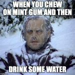 Frozen Guy | WHEN YOU CHEW ON MINT GUM AND THEN DRINK SOME WATER | image tagged in frozen guy | made w/ Imgflip meme maker