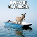 DONKEY ON A BOAT | R WE STILL ON TONIGHT! | image tagged in donkey on a boat | made w/ Imgflip meme maker
