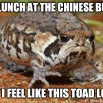 Grumpy Toad Meme | HAD LUNCH AT THE CHINESE BUFFET NOW I FEEL LIKE THIS TOAD LOOKS | image tagged in memes,grumpy toad | made w/ Imgflip meme maker