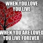 Tree heart | WHEN YOU LOVE YOU LIVE WHEN YOU ARE LOVED YOU LIVE FOREVER | image tagged in tree heart | made w/ Imgflip meme maker