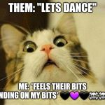 "Scared Cat Meme | THEM: ""LETS DANCE"" ME: *FEELS THEIR BITS GRINDING ON MY BITS* ???☠☠? 