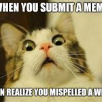 Scared Cat Meme | WHEN YOU SUBMIT A MEME THEN REALIZE YOU MISPELLED A WERD | image tagged in memes,scared cat | made w/ Imgflip meme maker