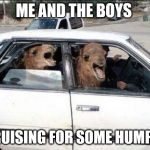 humpy humps | ME AND THE BOYS CRUISING FOR SOME HUMPS | image tagged in memes,quit hatin,me and the boys week | made w/ Imgflip meme maker