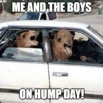 Quit Hatin Meme | ME AND THE BOYS ON HUMP DAY! | image tagged in memes,quit hatin | made w/ Imgflip meme maker