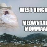Take me home... | WEST VIRGINIA MEOWNTAIN  MOMMAAA | image tagged in screaming cowboy cat | made w/ Imgflip meme maker