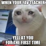 Crying cat | WHEN YOUR FAV TEACHER YELL AT YOU FOR THE FIRST TIME | image tagged in crying cat | made w/ Imgflip meme maker