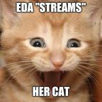 "Excited Cat Meme | EDA ""STREAMS"" HER CAT 