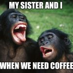 Bonobo Lyfe Meme | MY SISTER AND I WHEN WE NEED COFFEE | image tagged in memes,bonobo lyfe | made w/ Imgflip meme maker