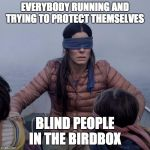 Bird Box Meme | EVERYBODY RUNNING AND TRYING TO PROTECT THEMSELVES BLIND PEOPLE IN THE BIRDBOX | image tagged in memes,bird box | made w/ Imgflip meme maker