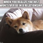 Sad Doge | WHEN YOU REALIZE YOU JUST WON'T EVER BE IN A RELATIONSHIP | image tagged in sad doge | made w/ Imgflip meme maker
