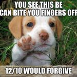 dog puppy bye | YOU SEE THIS BE CAN BITE YOU FINGERS OFF 12/10 WOULD FORGIVE | image tagged in dog puppy bye | made w/ Imgflip meme maker