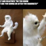 "Persian Cat Room Guardian Meme | FAMILY AND RELATIVES:""DO YOU KNOW WHAT ARE YOU GONNA DO AFTER YOU GRADUATE?"" ME: 