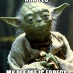 Star Wars Yoda Meme | AHH YES MY PEE PEE IS ERRECT | image tagged in memes,star wars yoda | made w/ Imgflip meme maker