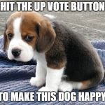sad dog | HIT THE UP VOTE BUTTON TO MAKE THIS DOG HAPPY | image tagged in sad dog | made w/ Imgflip meme maker
