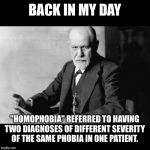 "Sigmund Freud Sorry but | BACK IN MY DAY ""HOMOPHOBIA"" REFERRED TO HAVING TWO DIAGNOSES OF DIFFERENT SEVERITY OF THE SAME PHOBIA IN ONE PATIENT. 