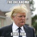 Donald Trump | THE OKLAHOMA STATE FAIR | image tagged in donald trump | made w/ Imgflip meme maker