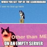 Hail pole cat | WHEN YOU GET TOP OF THE LEADERBOARD ON AN EMPTY SERVER | image tagged in hail pole cat | made w/ Imgflip meme maker