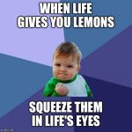 Success Kid Meme | WHEN LIFE GIVES YOU LEMONS SQUEEZE THEM IN LIFE'S EYES | image tagged in memes,success kid | made w/ Imgflip meme maker