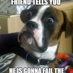 Surprised Dog | WHEN YOUR FRIEND TELLS YOU HE IS GONNA FAIL THE TEST AND GETS MAX GRADE | image tagged in surprised dog | made w/ Imgflip meme maker