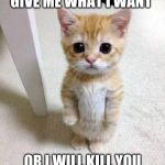 Cute Cat Meme | GIVE ME WHAT I WANT OR I WILL KILL YOU | image tagged in memes,cute cat | made w/ Imgflip meme maker