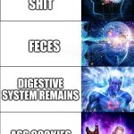 Expanding brain | POOP SHIT FECES DIGESTIVE SYSTEM REMAINS ASS COOKIES BLACKS OUT THE BUTT | image tagged in expanding brain | made w/ Imgflip meme maker