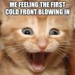 Excited Cat Meme | ME FEELING THE FIRST COLD FRONT BLOWING IN | image tagged in memes,excited cat,fall,cold weather,cold front | made w/ Imgflip meme maker