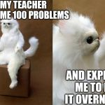 Persian Cat Room Guardian Meme | MY TEACHER GIVES ME 100 PROBLEMS AND EXPECTS ME TO DO IT OVERNIGHT | image tagged in memes,persian cat room guardian | made w/ Imgflip meme maker