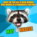 What county is it that you are from Timiddeer ?? ( ͡❛ ͜ʖ ͡❛)✌ | WHAT DO YOU CALL A IRISH WOMAN WHO WORKS IN A CONDIMENTS FACTORY MAY O' NNAISE | image tagged in memes,o puns,irish,timiddeer,just kidding | made w/ Imgflip meme maker