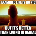 Lion King Meme | THE EXAMINED LIFE IS NO PICNIC BUT IT'S BETTER THAN LIVING IN DENIAL | image tagged in memes,lion king | made w/ Imgflip meme maker