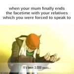 It's been 3000 years | when your mum finally ends the facetime with your relatives which you were forced to speak to | image tagged in it's been 3000 years | made w/ Imgflip meme maker