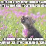 "Baby Insanity Wolf Meme | COLLEAGUE KEEPS MISPELLING MY NAME DESPITE US WORKING TOGETHER FOR MONTHS I DELIBERATELY STARTED WRITING HER NAME AS ""KRISTEN"" INSTEAD OF ""K 