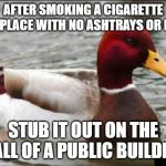 Malicious Advice Mallard Meme | AFTER SMOKING A CIGARETTE IN A PLACE WITH NO ASHTRAYS OR BINS STUB IT OUT ON THE WALL OF A PUBLIC BUILDING | image tagged in memes,malicious advice mallard | made w/ Imgflip meme maker
