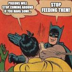 Batman Slapping Robin Meme | PIGEONS WILL STOP COMING AROUND IF YOU HANG SOME... STOP FEEDING THEM! | image tagged in memes,batman slapping robin | made w/ Imgflip meme maker