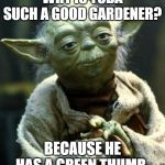 Star Wars Yoda Meme | WHY IS YODA SUCH A GOOD GARDENER? BECAUSE HE HAS A GREEN THUMB. | image tagged in memes,star wars yoda | made w/ Imgflip meme maker