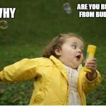 Chubby Bubbles Girl Meme | WHY ARE YOU RUNNING FROM BUBBLES? | image tagged in memes,chubby bubbles girl | made w/ Imgflip meme maker