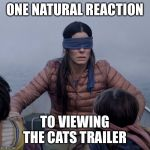 Bird Box Meme | ONE NATURAL REACTION TO VIEWING THE CATS TRAILER | image tagged in memes,bird box | made w/ Imgflip meme maker