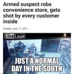 R/Therewasanattempt | JUST A NORMAL DAY IN THE SOUTH | image tagged in r/therewasanattempt | made w/ Imgflip meme maker