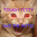 Prayerz for milkz pleze | TOUGH TITTY SAID THE 'KITTIE' | image tagged in tough,cats | made w/ Imgflip meme maker