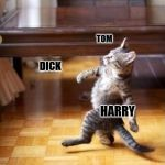 Cool Cat Stroll Meme | KICKING ASS AND TAKING NAMES WHO'S NEXT? TOM DICK HARRY | image tagged in memes,cool cat stroll,funny memes | made w/ Imgflip meme maker