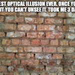 Brick wall | BEST OPTICAL ILLUSION EVER. ONCE YOU SEE IT YOU CAN'T UNSEE IT. TOOK ME 3 DAYS. | image tagged in brick wall | made w/ Imgflip meme maker