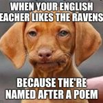 Frustrated dog | WHEN YOUR ENGLISH TEACHER LIKES THE RAVENS... BECAUSE THE'RE NAMED AFTER A POEM | image tagged in frustrated dog | made w/ Imgflip meme maker