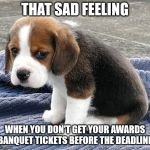 sad dog | THAT SAD FEELING WHEN YOU DON'T GET YOUR AWARDS BANQUET TICKETS BEFORE THE DEADLINE | image tagged in sad dog | made w/ Imgflip meme maker