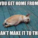 tired dog | WHEN YOU GET HOME FROM WORK BUT CAN'T MAKE IT TO THE BED | image tagged in tired dog | made w/ Imgflip meme maker